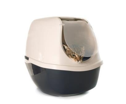 best covered litter box
