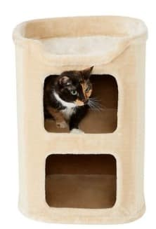 best cat furniture for senior cats