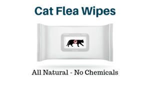 Wipes for fleas on cats