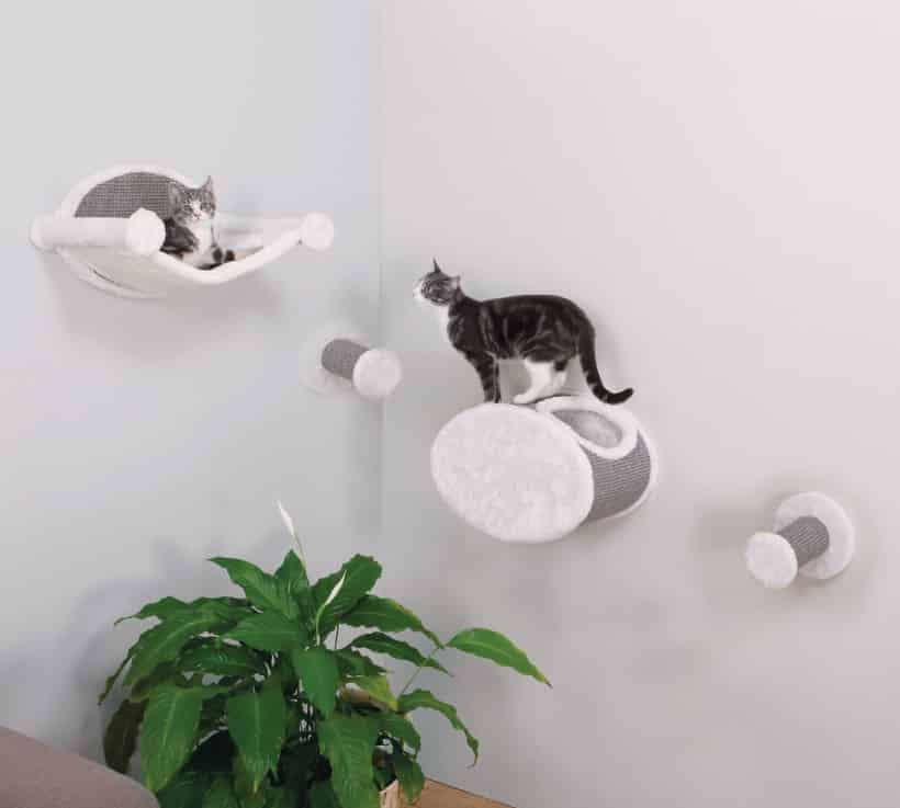 wall steps for cats