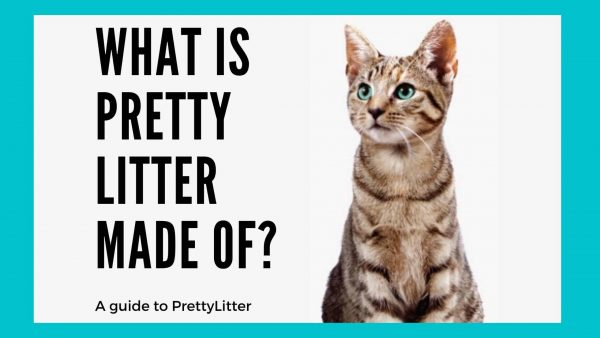 what is pretty litter made of