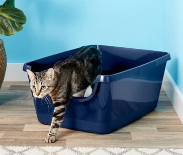 extra large open top litter box